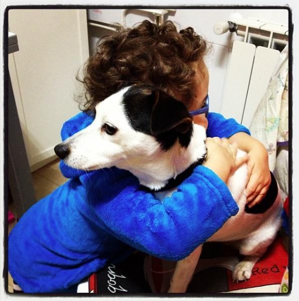 abrazo mascota