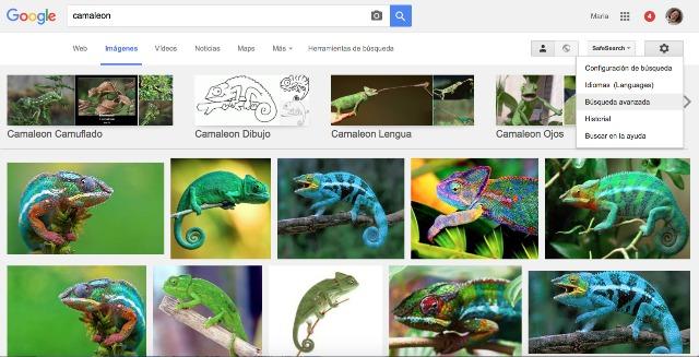 buscador de imagenes google